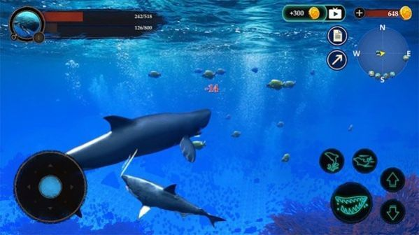 抹香鲸模拟器游戏手机版安卓版图片1