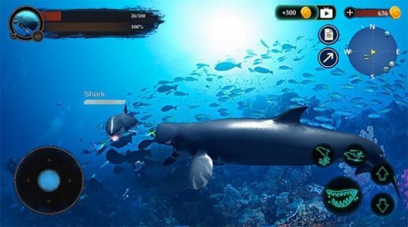 抹香鲸模拟器游戏截图
