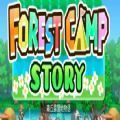 森丘露营地物语游戏攻略完整版