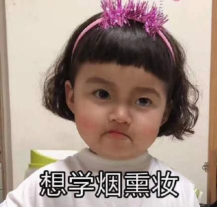 我想學化妝表情包