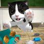 猫咪模拟器破解版
