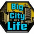 城市生活模拟器2汉化版