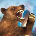 愤怒的熊横冲直撞游戏
