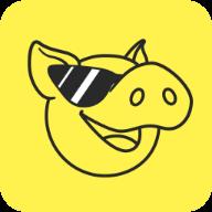 豪猪网app