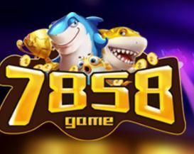 7858游戏