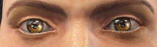 輻射4眼睛mod