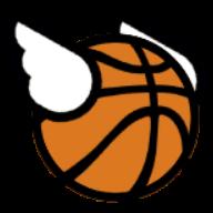 轻浮篮球破解版