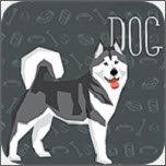 宠物狗交流器
