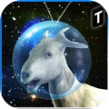 模拟太空山羊