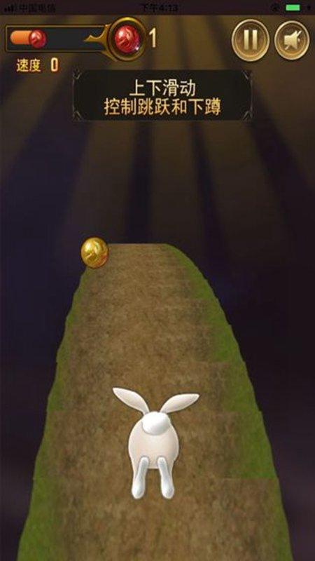 閃電兔子快跑