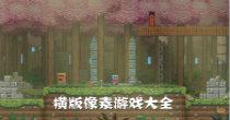 横版像素彩神网快三官方-彩神app官方大全