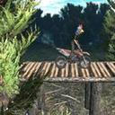 自行车试验森林