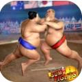 胖子的摔跤术游戏