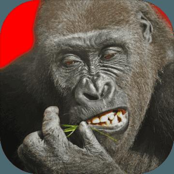飞行大猩猩重制版