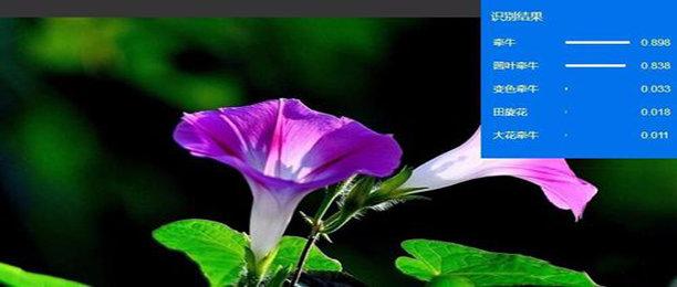 植物智能识别软件