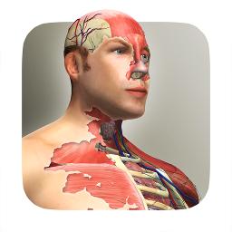 放置人类中文版下载-放置人类(创造人类模拟)汉化版app下载-SNS游戏交友网