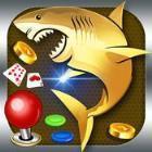 金鯊魚游戲