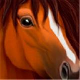 终极马匹模拟器