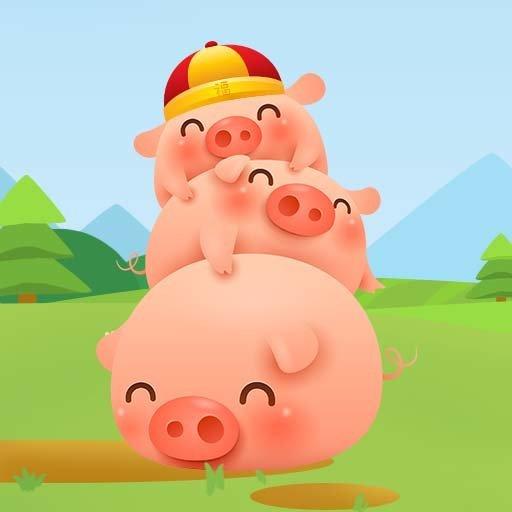 养猪场的阳光