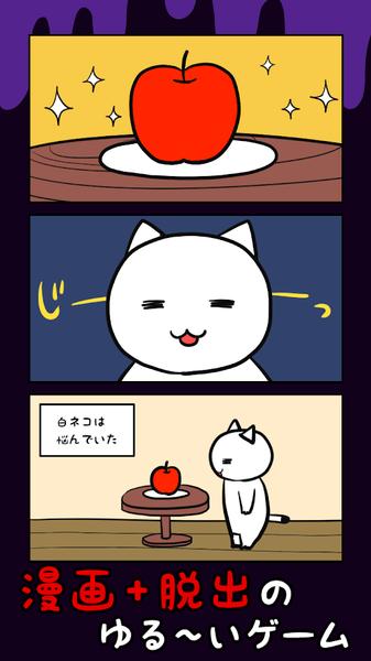 白猫与10分时限