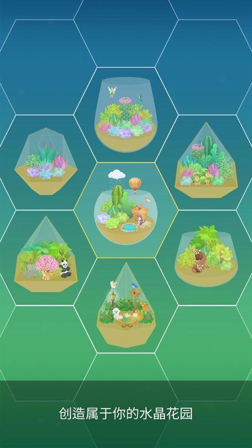 我的水晶花园介绍