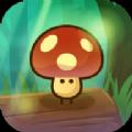 慌慌張張小蘑菇