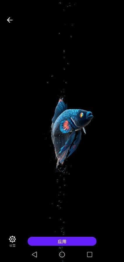 动态斗鱼壁纸