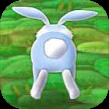 兔宝宝快跑
