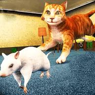猫鼠大对决