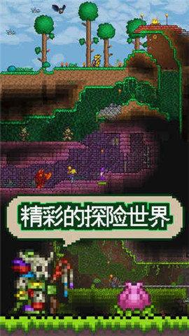 泰拉瑞亞1.2中文免費破解版