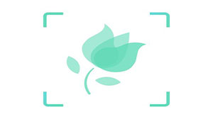 形色植物識別