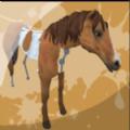 动物画家3D