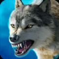 森林狼王模擬器