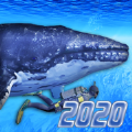 Diving Simulator 2020