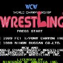 WCW世界摔角赛