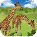 长颈鹿丛林生活模拟器