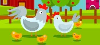欢乐养鸡场