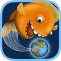 小金鱼进化史