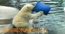 全網喝水APP集合