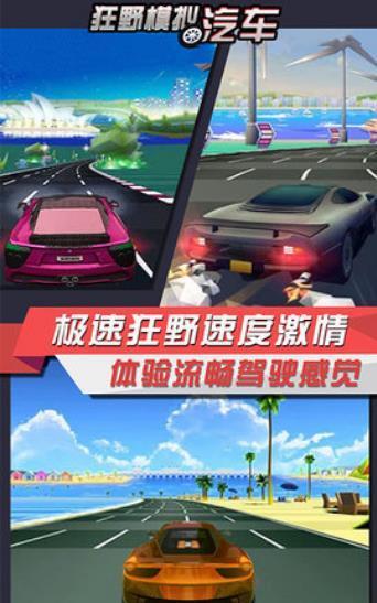 狂野汽车模拟器游戏截图