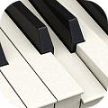 白塊鋼琴師