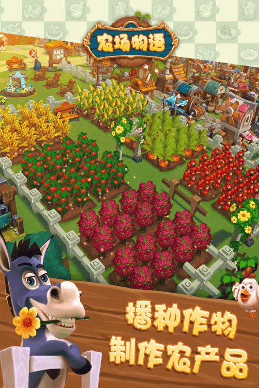 金多多农场