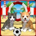 全民猫狗模拟器游戏