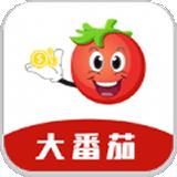 大番茄贷款