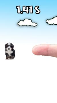 抖音别碰我的狗