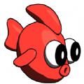 多彩鱼贷款