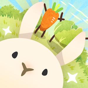 兔子真是太可爱了