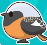 小鸟观察2安卓版