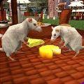 流浪鼠家庭模擬器