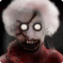 恐怖奶奶二代破解版